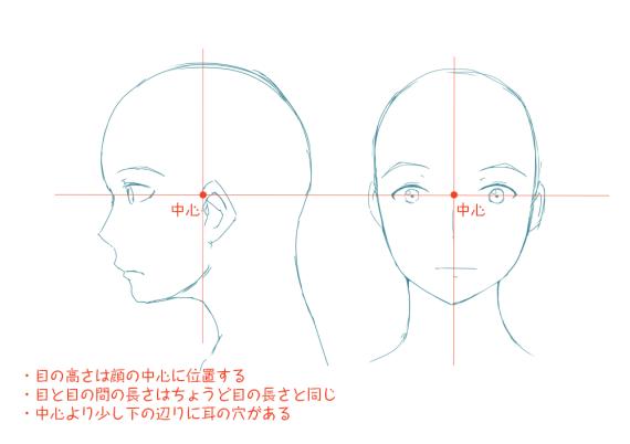 イラストレーターとしての頭部の知識:目の位置は顔の中心
